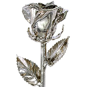 Platinum Rose by 24K Rose