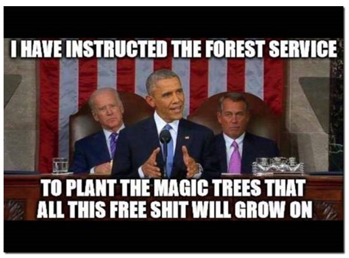 Obama Instructs National Forest Service.jpg