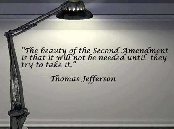 beauty_of_the_second_amendment.jpg